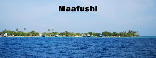 Maafushi - menu bar